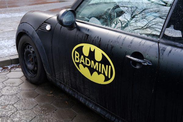 Badmini
