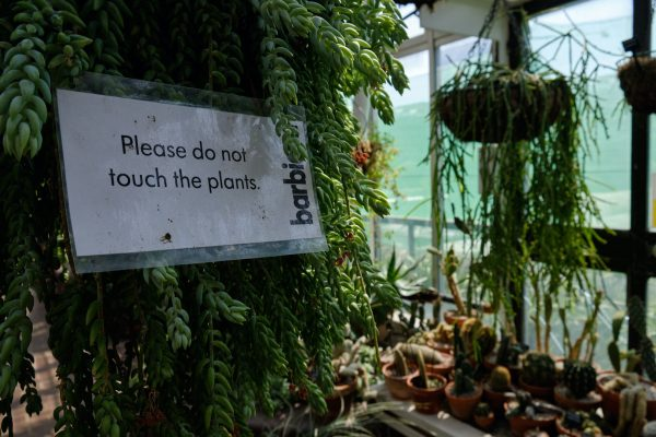 Please do not touch the plants